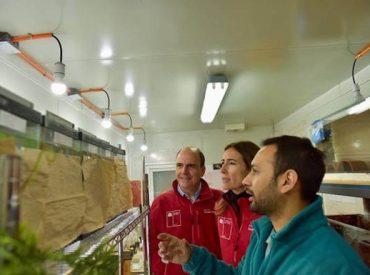 Minvu presenta plan de conservación para las últimas ranas del Loa que quedan en el mundo