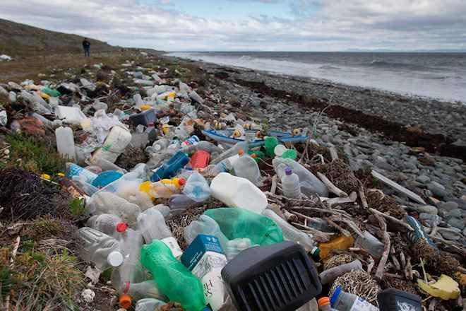 """Greenpeace y desechos en Fiestas Patrias: """"Cada familia chilena generará unos 32 kilos de basura"""""""