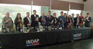 Viñateros de Biobío presentaron sus mejores productos para celebrar el Día Nacional del Vino