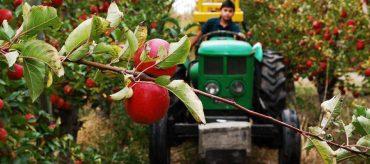 Fruittrade 2019 abordará la industria frutícola en un contexto de escasez de recursos y cambio climático