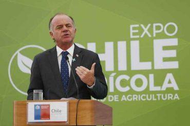 Más de 30.000 personas siguieron las alternativas  de Expo Chile Agrícola 2019