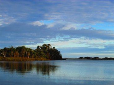 Llaman a proteger los bancos dechorozapatodelÁrea Marina Costera Protegida Lafken Mapu Lahuel