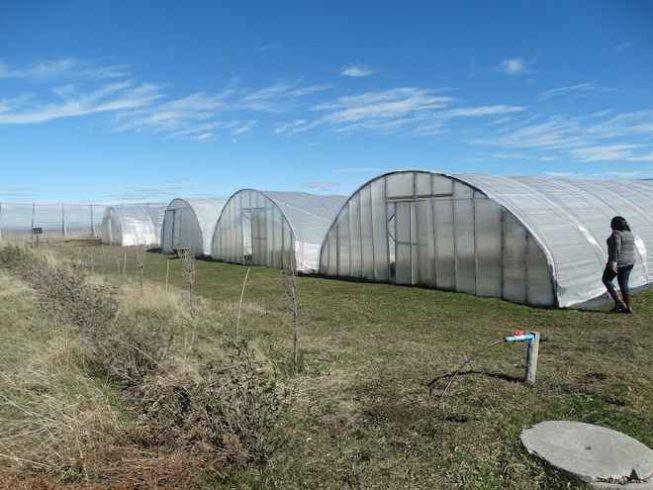 """Francisco Sales: """"Aprender cómo funciona la economía circular es el primer paso para posicionarnos como líderes nacionales en producción agropecuaria sustentable"""""""
