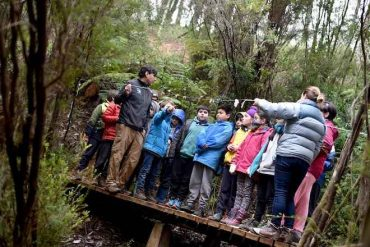 Centro de descubrimiento de la naturaleza sorprende en plena selva Valdiviana