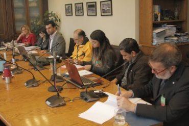 Comisión de Derechos Humanos recibe antecedentes actualizados del Colegio Médico, del INDH y de abogado constitucionalista