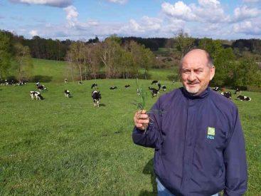 Investigador de INIA Remehue trabaja en la intensificación sostenible de la lechería