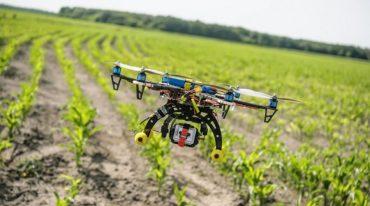 Ciclo de charlas abordará la transformación digital del sector agrícola en Chile
