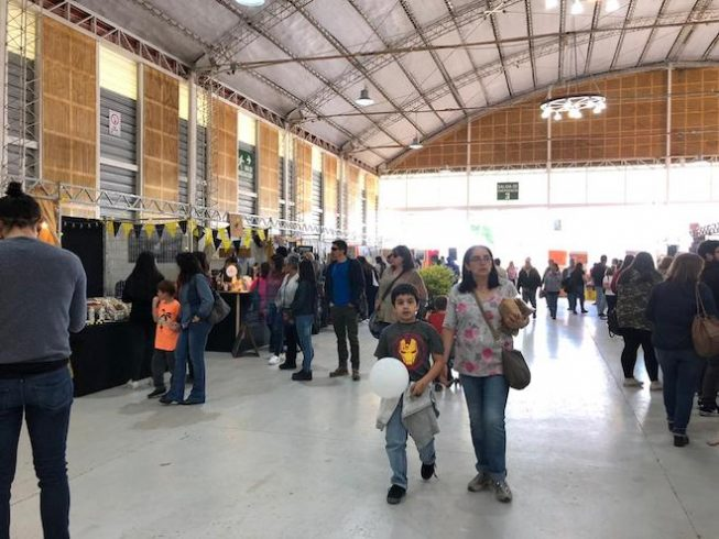 "Municipio repetirá feria ""Levantemos las Pymes de Valdivia"" este fin de semana"