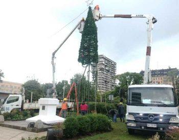 Municipio de Osorno retiró árbol de Navidad que fue instalado en plaza de armas tras sufrir destrozos por parte de desconocidos