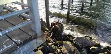 Carabinero se lanza al mar para salvar a mujer en Puerto Montt
