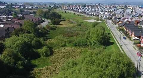 Corte de Valdivia ordena mitigar efectos negativos por construcción de proyecto inmobiliario en Parque Krahmer