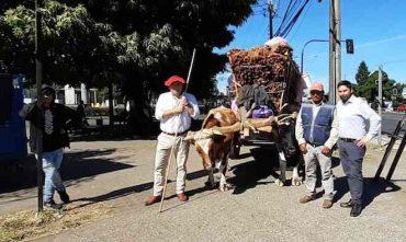 Seremi de Agricultura entrega fardos a los cochayuyeros que se encuentran en Temuco vendiendo sus productos