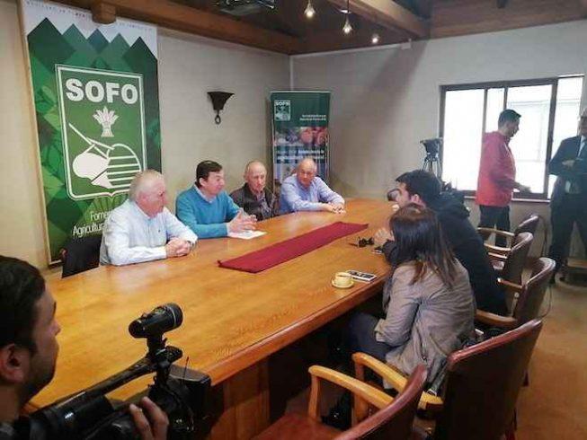 SOFO llama a Comisión de Seguridad del Senadoaprobar con urgencia proyecto de Ley Antisaqueos