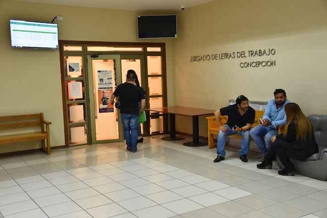 Juzgado Laboral de Concepción ordena a empresa y ONG pagar prestaciones adeudadas a trabajadores subcontratados