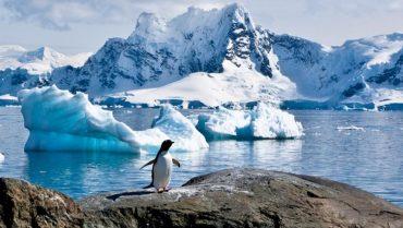 Seminario sobre cambio climático en Antártica y Magallanes llamó a la reflexión de la ciudadanía
