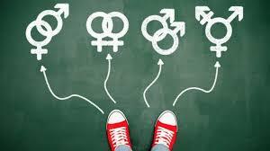 73 personas han realizado su audiencia de cambio de sexo registral en la Región del Biobío