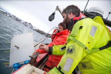 COP: los contaminantes que se resisten a desaparecer de la Antártica