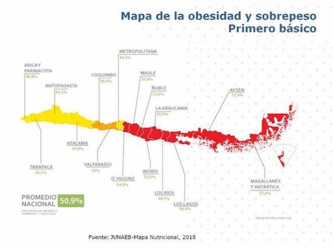 Casi el 60% de los niños y niñas de 1° básico en Magallanes tiene sobrepeso u obesidad