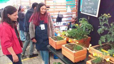 Cifras positivas arrojó ExpoFosis en la comuna de Niebla