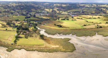 Libro didáctico aborda biodiversidad de Reserva Marina y Humedal de Putemún