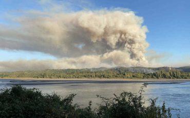 Incendio que afecta a Hualqui concentra recursos aéreos y terrestres