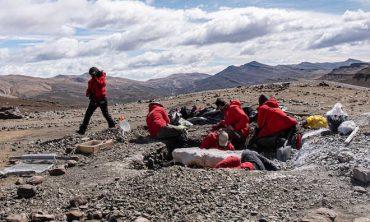 Cerro Guido se consolida como la piedra Rosetta de la paleontología