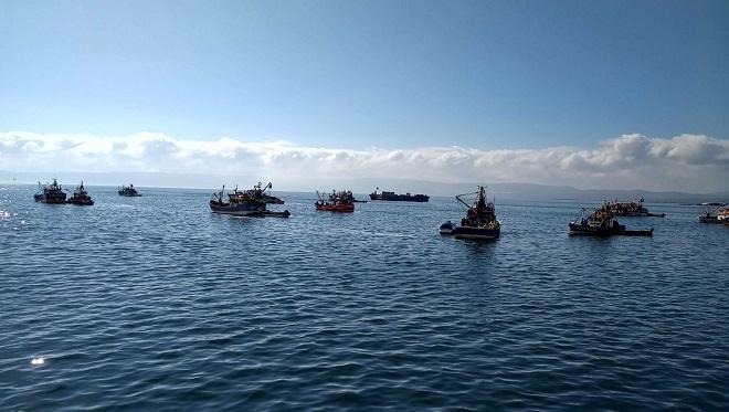 Anuncian medidas especiales para certificación de desembarques por inicio de temporada de pesca de sardina y anchoveta
