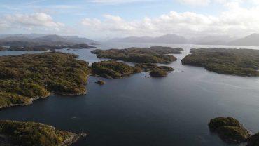 Publican resolución que impide la entregade nuevas concesiones salmoneras en la región de Aysén