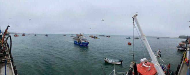 Detectan embarcaciones artesanales pelágicas en zona exclusiva para naves menores de la región del Biobío