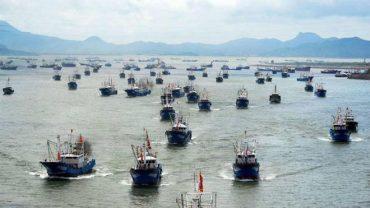 Comunidad demanda fiscalización por presencia de barcos asiáticos en costas chilenas
