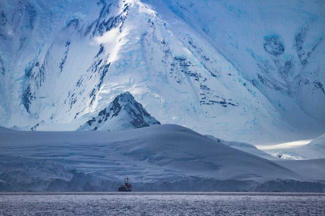 Huevo fósil de mosasaurio descubierto en la Antártica