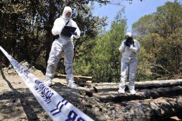 BIDEMA y Fiscalía Aysén investigarán deceso de ballena en centro de cultivo