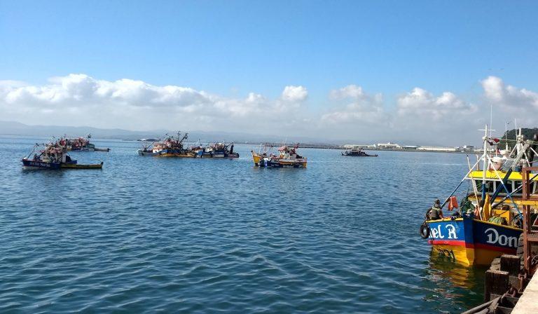 Sernapesca citó a tribunales de Justicia a más de 20 embarcaciones artesanales por pescar en la primera milla costera