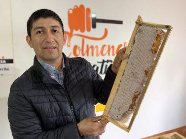 Mercado Campesino Online – Región del Biobío se transforma en la vitrina rural más grande de INDAP con la oferta de 100 pequeñosproductores