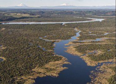 Decreto Supremo crea Santuarios de la Naturaleza Humedales del Río Maullín y Humedales del Río Chepu en Los Lagos