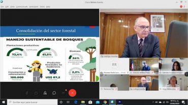Post Covid-19: en seminario del Banco Mundial aseguran que los bosques de Chile serán claves en la reactivación económica