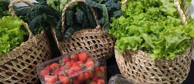 Productos orgánicos: alimentos saludables en tiempos de pandemia