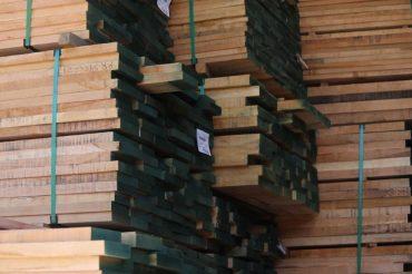 Exportaciones forestales caen y resienten efectos de la pandemia en Chile