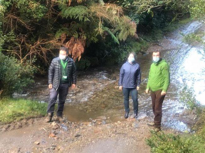 Comunidad castreña acusa que proyecto de Saesa generará daños irreversibles al ecosistema de la zona