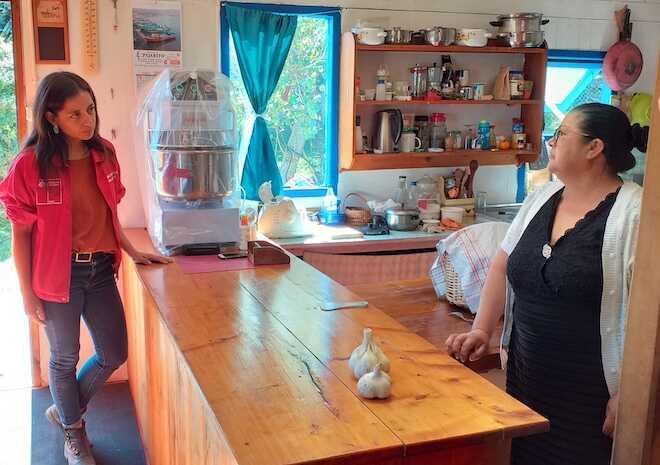 Fondo de Solidaridad e Inversión Social (Fosis): desafíos y soluciones para apoyar a emprendedores de Los Ríos durante la pandemia