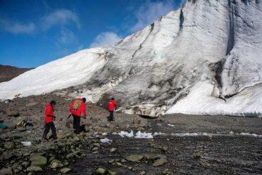Los nuevos ruidos de la tierra: formación de suelos en la Antártica