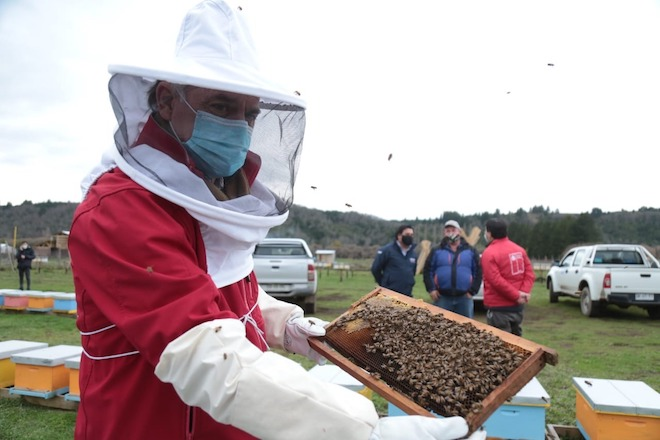"""Ministro Antonio Walker en el Día de la Miel: """"Agregar la miel al Códex Alimentarius hará que sea más difícil adulterarla y falsificarla"""""""