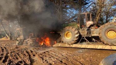"""Continúa conflicto entre pueblos originarios y empresas forestales en la zona sur de Chile: """"Los atentados siguen en alza"""""""