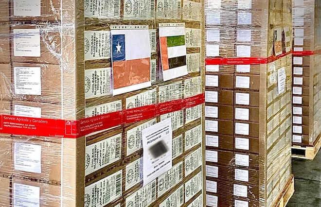 Exportan a Emiratos Árabes miel de pequeños productores de zona centro sur de Chile