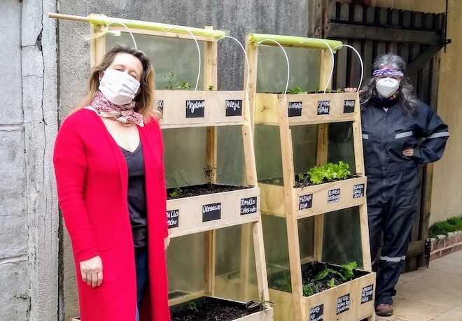 Huertos verticales de hortalizas: la exitosa apuesta comercial de cooperativa de agricultoras de Osorno