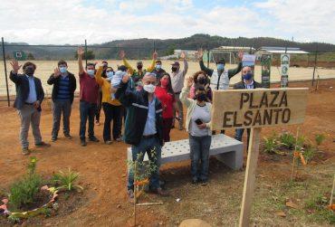 Árboles nativos darán vida a la nueva Plaza El Santo, en Tomé