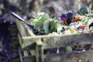 En Chile más de la mitad de los residuos domiciliarios son orgánicos, pero se recicla menos del 1%