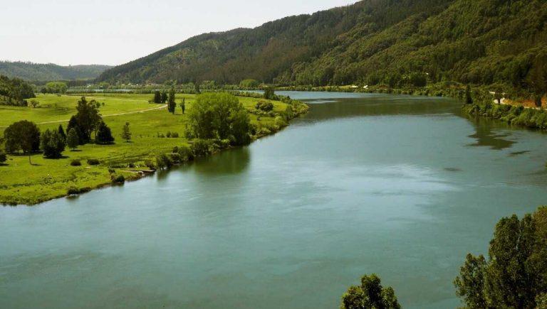 Ministerio del Medio Ambiente rechaza invalidación en contra de las Normas Secundarias de Calidad Ambiental del río Valdivia