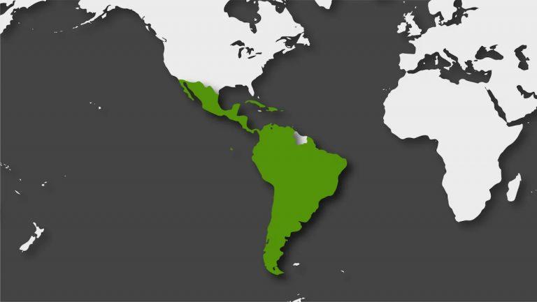 2021 es un año de reformulación para América Latina en el ámbito de la Tecnología de la Información