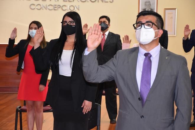 Corte de Apelaciones de Concepción recibió juramento de nuevos abogados